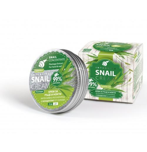 SNAIL Интензивно регенериращ крем за ръце и нокти